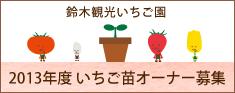 鈴木観光いちご園オーナー制度